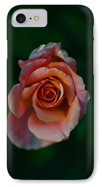 Close-up Of A Pink Rose, Beverly Hills IPhone 7 Case