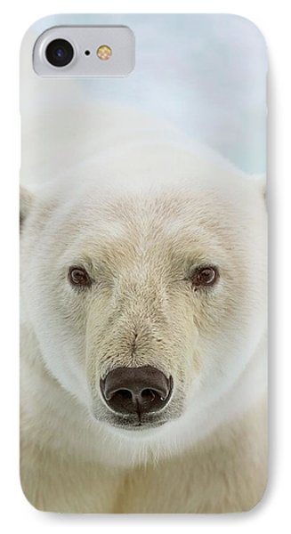 Close Up Of A Polar Bears Head IPhone Case by Peter J. Raymond