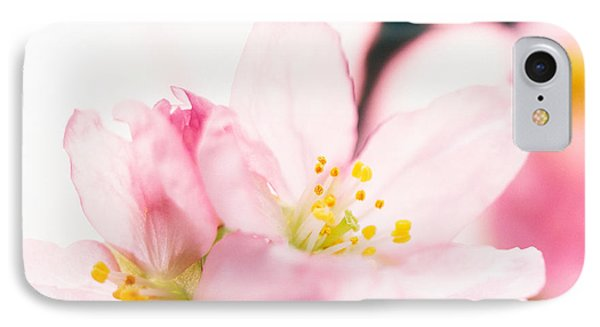 Close Up Of Cherry Blossom IPhone Case by Panoramic Images