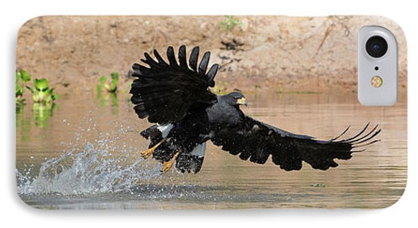 Close-up Of Hawk Fishing In River IPhone Case by Panoramic Images