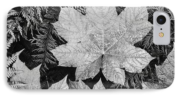 Close Up Of Leaves IPhone Case