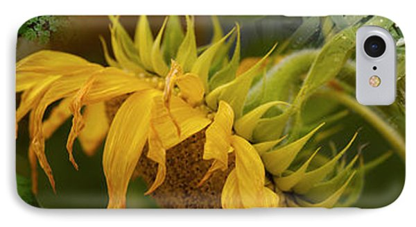 Close-up Of Leaves With Yellow Flower IPhone Case by Panoramic Images