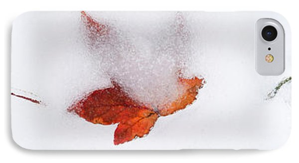 Close-up Of Snow Covered Maple Leaves IPhone Case