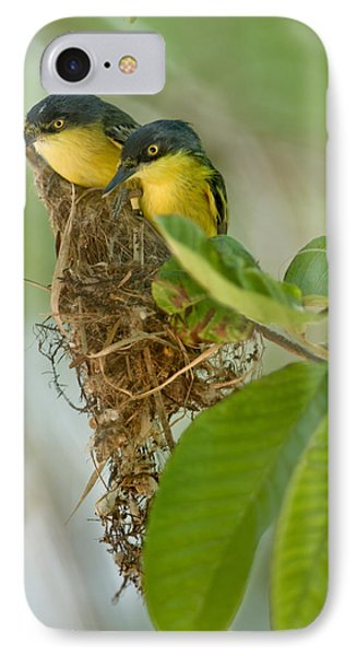 Flycatcher iPhone 7 Case - Close-up Of Two Common Tody-flycatchers by Panoramic Images