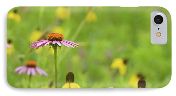 Close-up Of Various Coneflowers IPhone Case by Panoramic Images