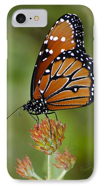 Close-up Pose Phone Case by Penny Lisowski