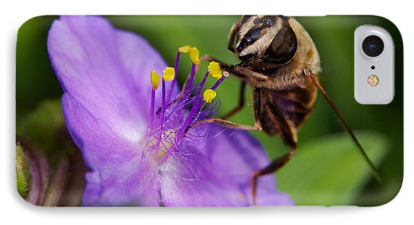 Closeup Of A Bee On A Purple Flower IPhone Case