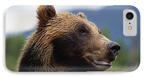 Closeup Of Brown Bears Head And Face IPhone Case by Doug Lindstrand