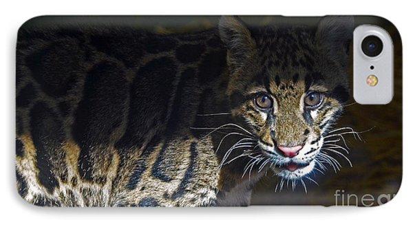 Clouded Snow Leopard Cub IPhone Case