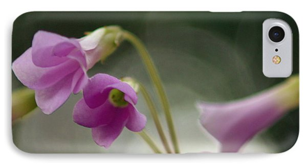 IPhone Case featuring the photograph Clover Bells by Greg Allore