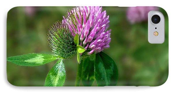 Clover - Wildflower IPhone Case by Henry Kowalski