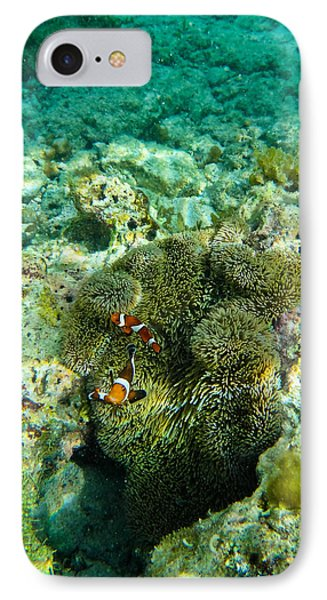 Clown Fish IPhone Case