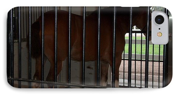 Clydesdale Horses 1  IPhone Case by Barbara Dalton