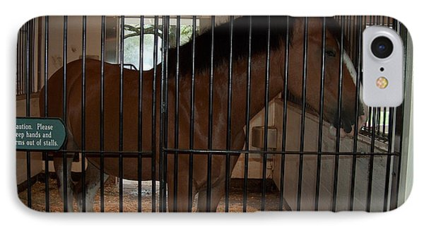 Clydesdale Horses 2  IPhone Case by Barbara Dalton