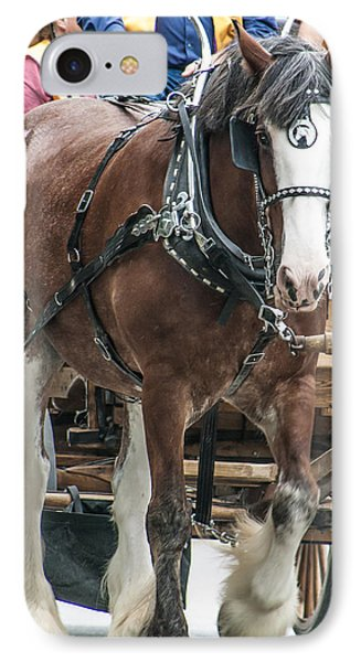 IPhone Case featuring the photograph Clydesdale On Parade  by Dawn Romine
