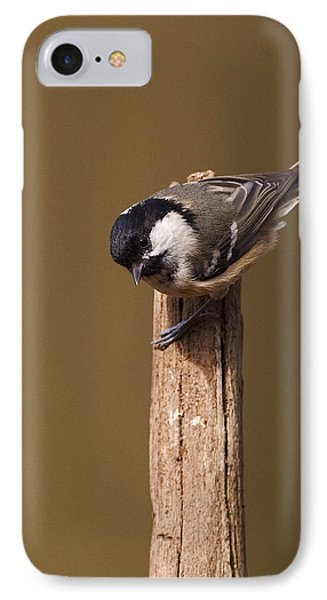 IPhone Case featuring the photograph Coal Tit by Paul Scoullar