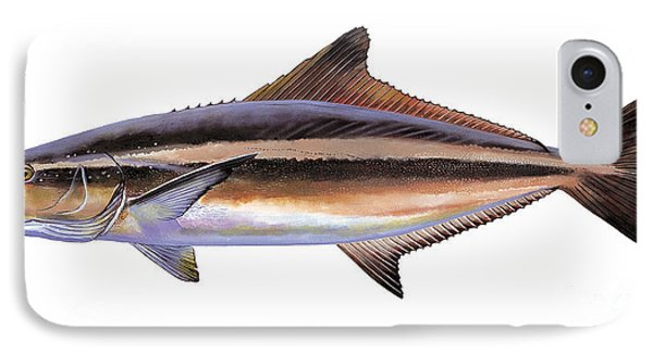 Cobia IPhone Case