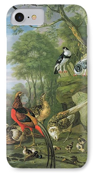 Cock Pheasant Hen Pheasant And Chicks And Other Birds In A Classical Landscape IPhone Case by Pieter Casteels