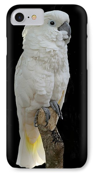 IPhone Case featuring the photograph Cockatoo Cutie by Myrna Bradshaw