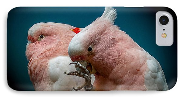 Cockatoos IPhone Case by Ernie Echols