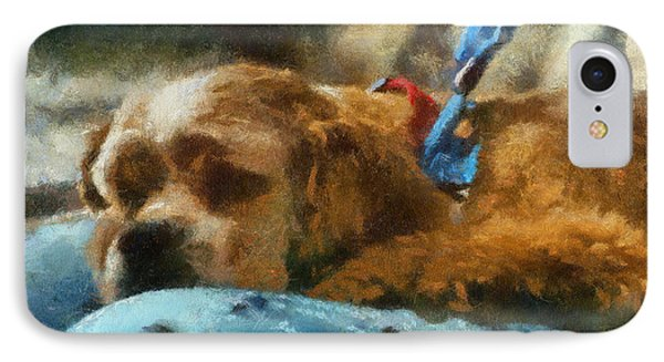 Cocker Spaniel Photo Art 07 IPhone Case by Thomas Woolworth