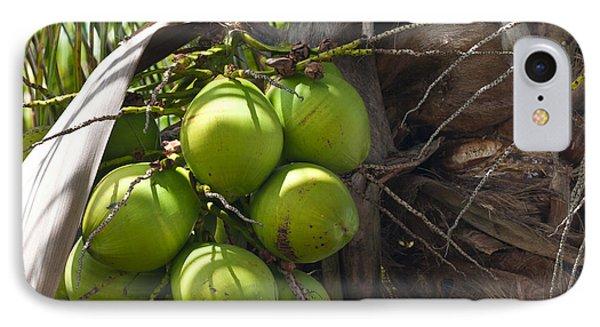 Coconuts Proliferate Phone Case by Michelle Wiarda