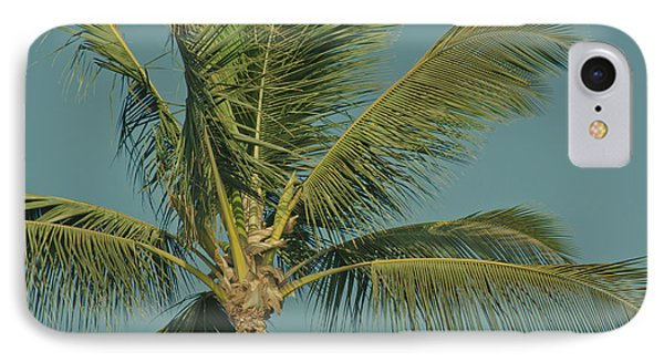 Cocos Nucifera - Niu - Palma - Po'olenalena Beach Maui Hawaii Phone Case by Sharon Mau