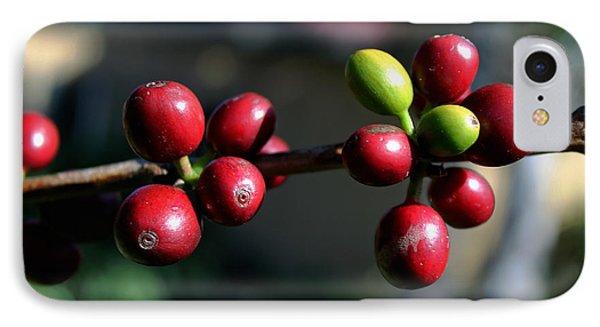 Coffee Beans IPhone Case by Pamela Walton
