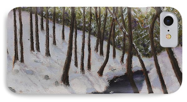 Cold Creek IPhone Case by Alan Mager