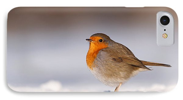 Cold Fee Warm Light Robin In The Snow IPhone Case by Roeselien Raimond