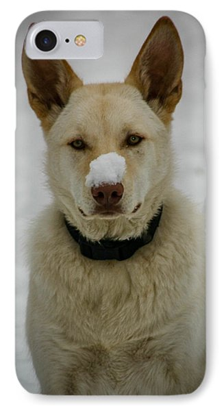 Cold Nose IPhone Case