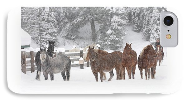 Cold Ponnies IPhone Case by Diane Bohna