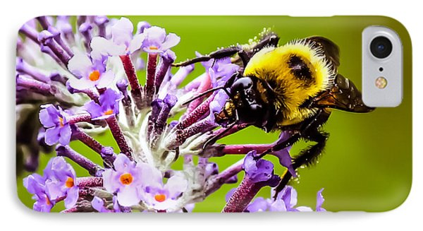 Collecting Pollen IPhone Case