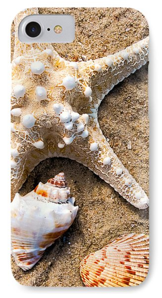 Collecting Shells IPhone Case by Colleen Kammerer