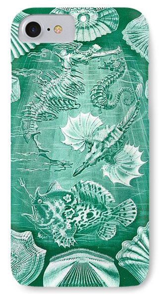 Collection Of Teleostei Phone Case by Ernst Haeckel
