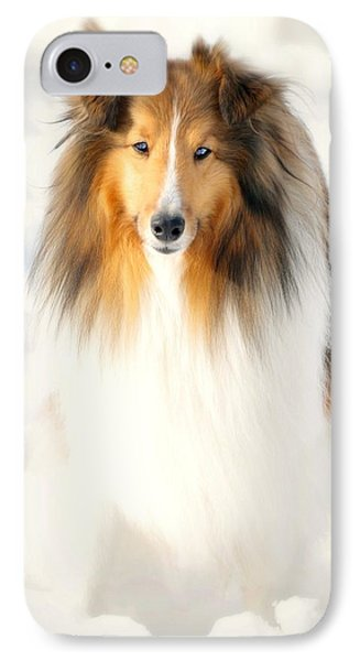 Collie  Phone Case by Diana Angstadt