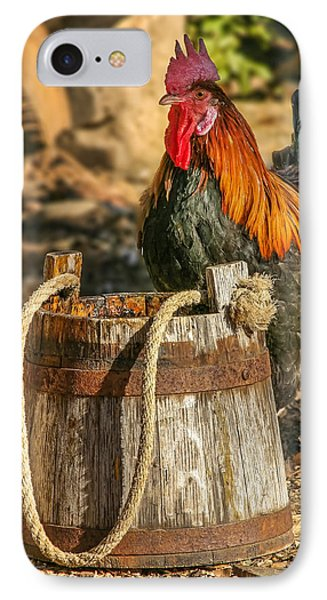 Coloful Rooster 2 IPhone Case