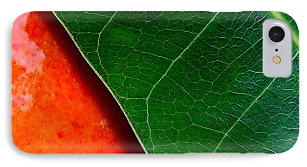 Color Me Mango Sweet And Spicy Phone Case by James Temple