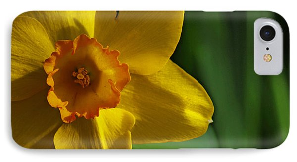 Color Of Spring IPhone Case by Rowana Ray