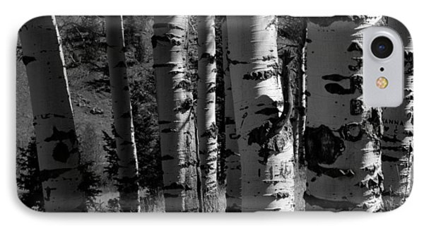 Colorado Aspen Grove II  IPhone Case by John Pagliuca