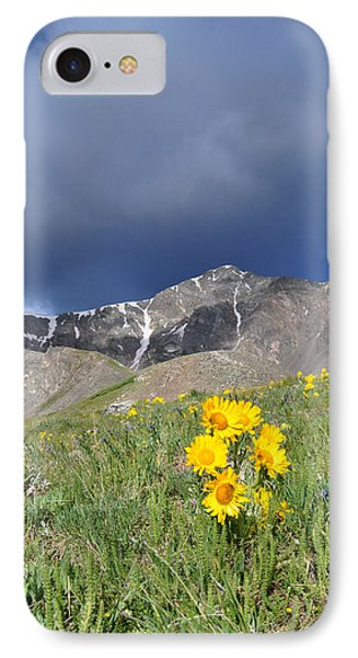 Colorado Beauty IPhone Case by Aaron Spong
