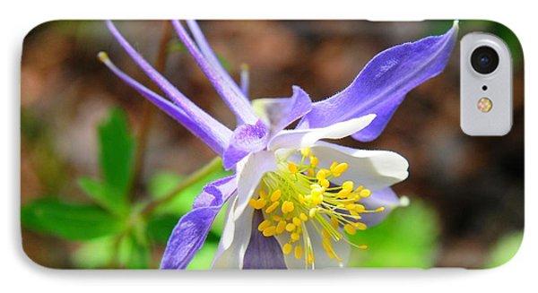 Colorado Blue Columbine Flower IPhone Case