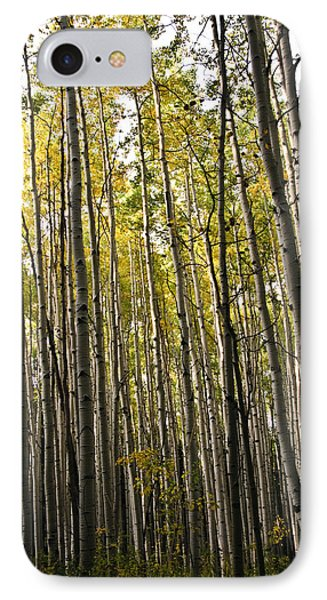 IPhone Case featuring the photograph Colorado Changing Fifteen  by Eric Rundle