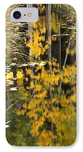 IPhone Case featuring the photograph Colorado Changing Five  by Eric Rundle