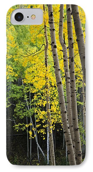 IPhone Case featuring the photograph Colorado Changing Two  by Eric Rundle