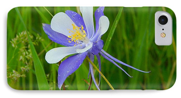 Colorado Columbine IPhone Case