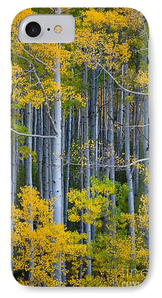 Colorado Fall Color Phone Case by Inge Johnsson