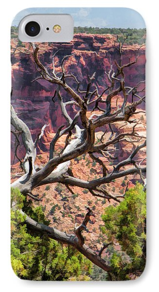 Colorado National Monument Dead Branches IPhone Case by Christopher Arndt
