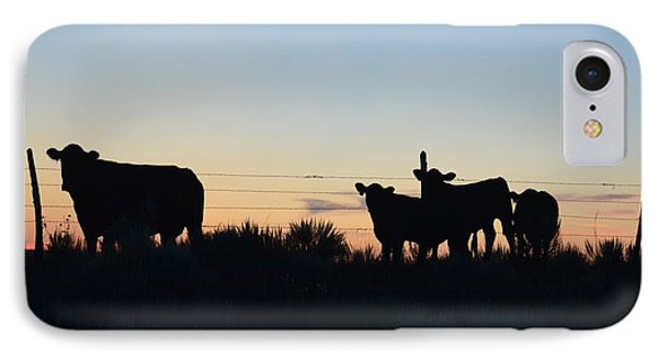 Colorado Cattle Silhouettes IPhone Case by Clarice  Lakota