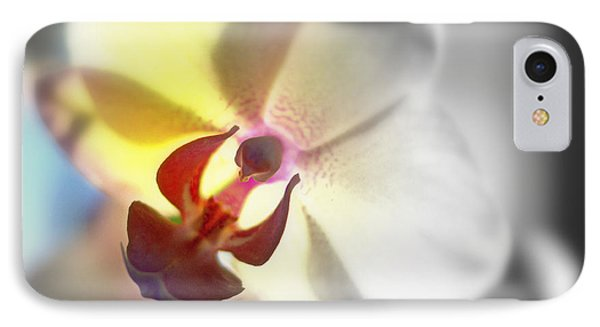Colored Focal Point Phalaenopsis Orchid IPhone Case by Rosemarie E Seppala